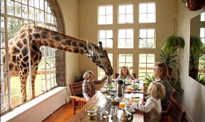 Contornos (066) Giraffe Manor breakfast